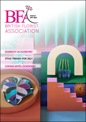 BFA Issue 34 front cover